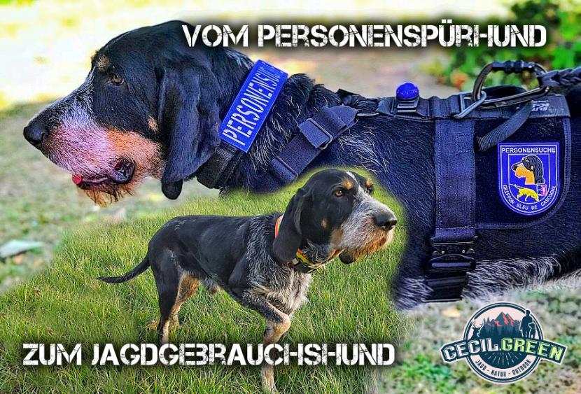 Personenspürhund Mantrailer Jagdhund